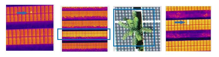solar module cells